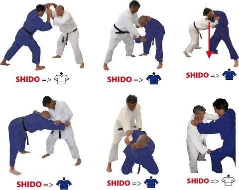 Les r gles d 39 arbitrages 2013 2016 comit judo loz re - Institut national du judo porte de chatillon ...